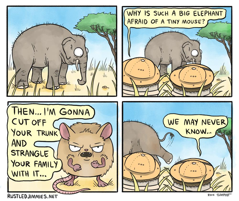 Elephant And The Mouse